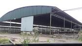 Nhiều khu vực chuồng trại của dự án chăn nuôi Bình Hà tại Hà Tĩnh bỏ trống từ lâu