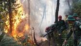 Lực lượng chức năng tham gia chữa cháy rừng