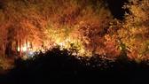 Các lực lượng chức năng nỗ lực dập lửa trong đêm