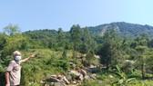 Ông Nguyễn Đình Thờng lo lắng nhà cửa, vườn tược đang ở gần dưới chân núi Lê Lê bị sạt lở