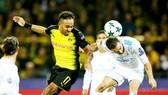 Dortmund (trái) hy vọng sẽ nhanh chóng quên đi thất bại trước Real Madrid (1-3) để tập trung cho mục tiêu giành chiến thắng trước Augsburg. Ảnh: Getty Images