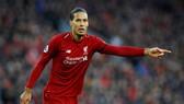 Virgil van Dijk đã trở thành nhân tố không thể thiếu của Liverpool. Ảnh: Getty Images
