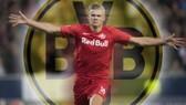 Erling Haaland không đến Man.United như đồn đoán, thay vào đó chọn Borussia Dortmund.