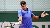 Juan Martin del Potro đã quay lại Roland Garros.