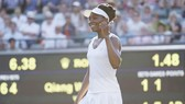 Venus Williams phá kỷ lục ở tuổi 37