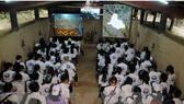 Các đại biểu thanh niên kiều bào tìm hiểu văn hóa lịch sử dân tộc tại huyện Củ Chi, TPHCM. Ảnh: TTXVN