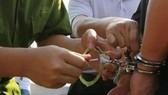 Giám đốc chi nhánh ngân hàng Agribank Krông Bông bị bắt giữ