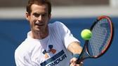 Andy Murray quyết định rút lui khỏi US Open 2017.