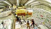 Chế biến gạo xuất khẩu ở ĐBSCL. Ảnh: NGUYỄN THANH DŨNG