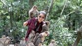 Đảo Khỉ thu hút du khách khi đến Cần Giờ