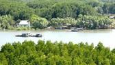 Kiến nghị bổ sung huyện Cần Giờ vào quy hoạch không gian biển quốc gia
