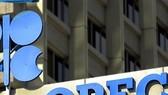 OPEC đối mặt thách thức lớn trong năm 2020
