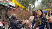 Tết phố Hà Nội đậm chất truyền thống