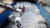 Trung Quốc gia tăng dự trữ lương thực