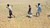 Iraq đối mặt nguy cơ thiếu nước trầm trọng
