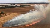 Khói lửa bốc lên từ đám cháy rừng tại khu vực Pantanal, bang Mato Grosso, Brazil ngày 29-7-2020. Nguồn: TTXVN