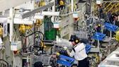 TPHCM dẫn đầu về đơn đăng ký xác lập quyền sở hữu công nghiệp