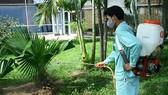 Tăng cường phòng chống dịch do virus Chikungunya