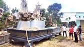 Mua bán cây rừng cổ thụ dọc quốc lộ 1A, đoạn qua huyện Phù Cát, tỉnh Bình Định. Ảnh: NGỌC OAI