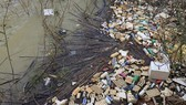 Bao bì thuốc bảo vệ thực vật sau khi sử dụng không được thu gom đúng quy định đã phát sinh ra môi trường và theo các dòng suối chảy về hồ Đan Kia. Ảnh: ĐOÀN KIÊN