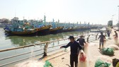 Các nghiệp đoàn nghề cá ở Bình Thuận  đang hoạt động rời rạc, kém hiệu quả