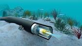 Chile lắp cáp quang biển ở Thái Bình Dương