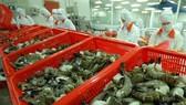 Xuất khẩu tôm và cá tra đang phục hồi ở thị trường Mỹ