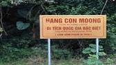 Khảo sát đề cử hang Con Moong là di sản văn hóa thế giới