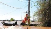 Thi công lưới điện trong mùa lũ tại huyện Hồng Ngự, tỉnh Đồng Tháp
