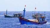 Dẫn giải tàu cá ở Cà Mau vi phạm vùng biển nước ngoài
