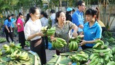 Giá trị sản xuất nông nghiệp TPHCM tăng hơn 10.000 tỷ đồng