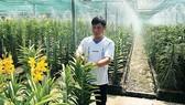 83% lao động nông nghiệp qua đào tạo có việc làm