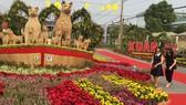 Người dân tham quan đường hoa trong ngày khai mạc