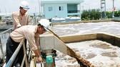3 khu công nghiệp chưa có hệ thống quan trắc nước thải tự động