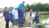 Nông dân học Bác bằng việc làm thiết thực