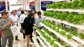 Hệ thống trồng rau sạch được giới thiệu tại Techmart 2018. Ảnh. T.BA