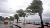 Bão số 2 đã suy yếu thành áp thấp nhiệt đới