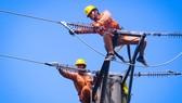 EVN khuyến cáo việc sử dụng điện