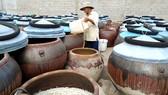 Nghề làm nước mắm truyền thống ở TP Phan Thiết đang bấp bênh  do thiếu nguồn nguyên liệu