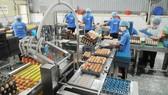 Tập trung sơ chế và phân phối sản phẩm sạch