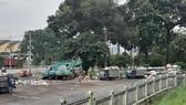 Bãi trung chuyển rác ở Công viên Long Bình gây ô nhiễm môi trường và làm xấu mỹ quan đô thị