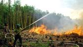 Chi cục Kiểm lâm tỉnh Hậu Giang diễn tập phòng cháy, chữa cháy rừng