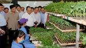 """Hội nghị """"Thủ tướng Chính phủ đối thoại với nông dân"""""""