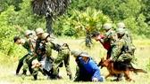 Vì sự bình yên của Tổ quốc - Bài 1: Tội phạm ma mãnh, liều lĩnh