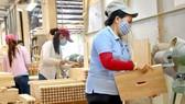 Xuất khẩu ngành gỗ tăng nhờ đầu tư nước ngoài