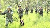 Cán bộ, chiến sĩ đơn vị Cụm cơ động chó nghiệp vụ 3  huấn luyện cảnh khuyển mật phục bắt tội phạm ma túy