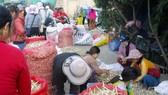 Độc đáo phiên chợ tỏi trên đảo Lý Sơn