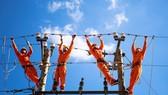Sớm bàn giao mặt bằng dự án lưới điện trọng điểm