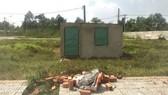 """Một trường hợp xây nhà """"hộp diêm"""" tại phường Long Phước, quận 9 (TPHCM) để lách luật, núp bóng hộ gia đình làm sổ đỏ bán đất nền"""