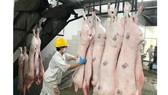 Hệ thống siêu thị đẩy mạnh cung ứng thịt heo,  góp phần bình ổn thị trường tiêu dùng